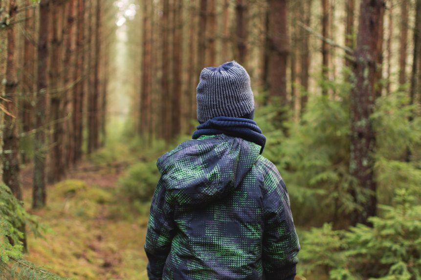 Un bimbo nella foresta