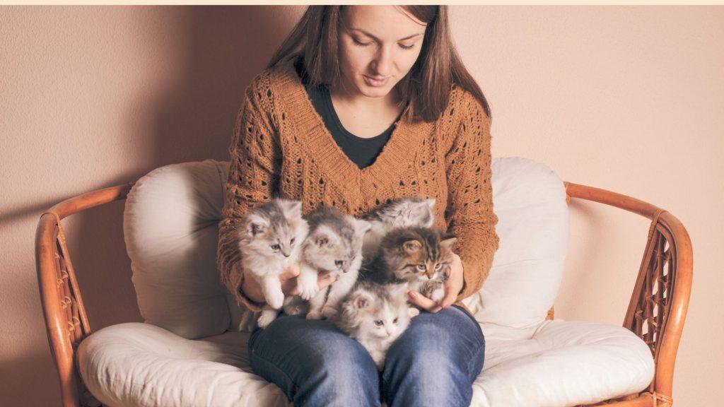 Ragazza seduta, con tanti gattini sulle ginocchia. Imparare come proteggere gli animali dal freddo è importante
