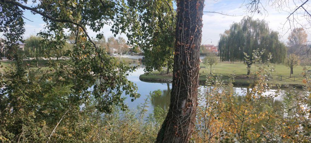 Parco Golfera di Lugo vivere smart in Romagna significa scegliere mare o montagna o pianura