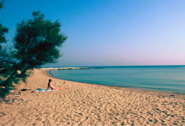 cosa vedere in Romagna assolutamente la magnifica e selvaggia spiaggia libera di Classe tra le esperienze imperdibili in Romagna